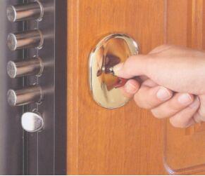 вставить входную дверь в истре